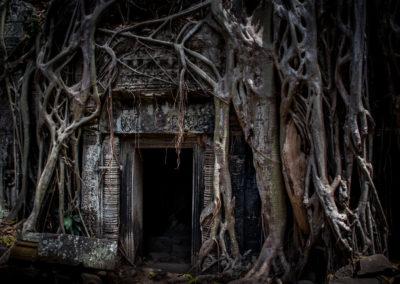 Ta Phrom © Gabriele Stoia - In Asia Travel