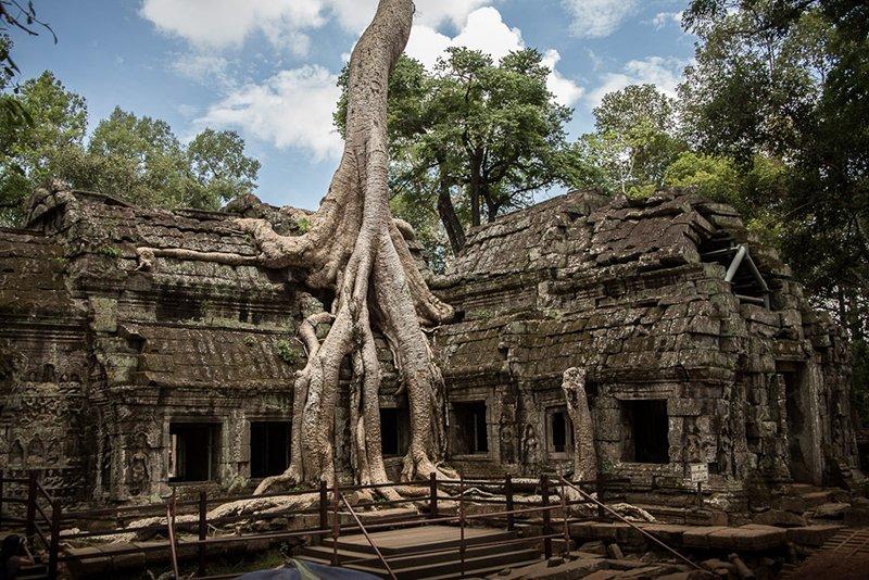 Rovine di Angkor: il Ta Phrom