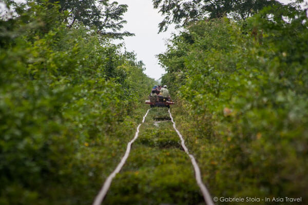 Bamboo Train © Gabriele Stoia